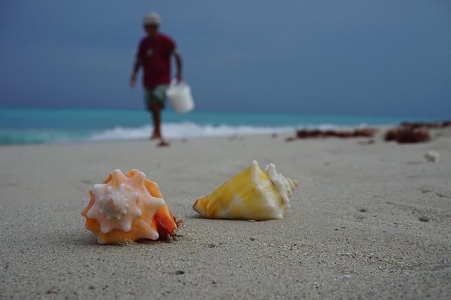 zájezd Kuba