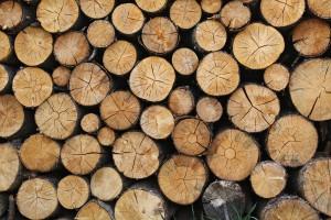 logs-690888_1280