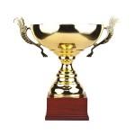 Sportovní poháry pro vítěze