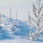 Sněhové frézy Honda – a zima může přijít